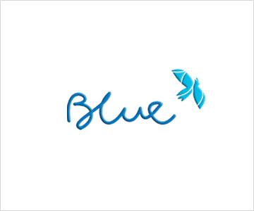 Blue Corporation profile